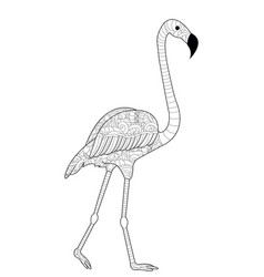 flamingos coloring for adults vector image