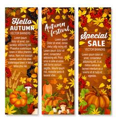 autumn vegetable leaf banner on wood background vector image vector image