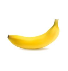 banana object vector image vector image