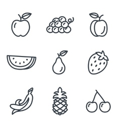 Fruit and vegetables icons linear style vector image