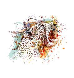 color of a leopard head vector image vector image