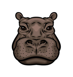 hippo or african hippopotamus animal isolated icon vector image