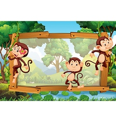 Frame design with three monkeys in the woods vector image