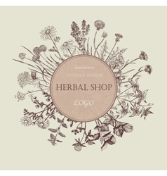 Herbal shop logo Hand drawn design vector