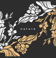 Luxury template coffee tree vector