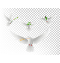 realistic pigeons with branches white flying vector image
