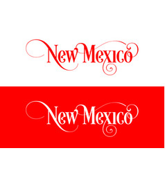 typography of the usa new mexico states vector image