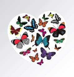 Butterfly heart pattern vector