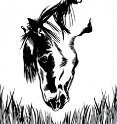horse feeding on grass illustration vector image