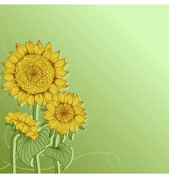 Yellow sunflowers flower element for design vector image