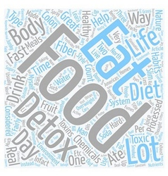 The perfect diet anyone text background wordcloud vector image vector image