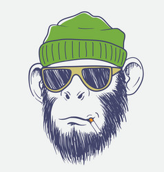 cool monkey smoking a cigarette vector image