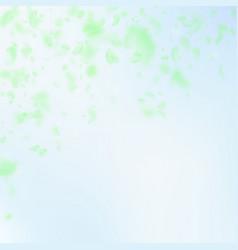 Green flower petals falling down dramatic romanti vector