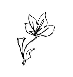 japanese flower blossom hand drawn ink art vector image