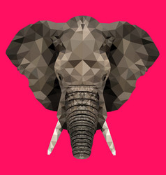 low polygonal elephant vector image