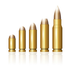 Set of different bullets vector
