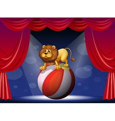 A lion performing at the circus vector image vector image