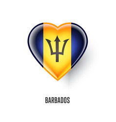 patriotic heart symbol with barbados flag vector image vector image