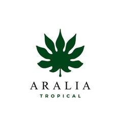 aralia leaf logo icon vector image