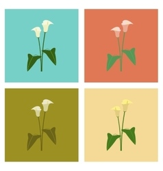 assembly flat flower calla vector image