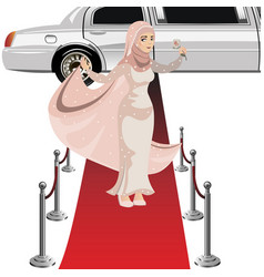 beautiful muslim woman in dress vector image