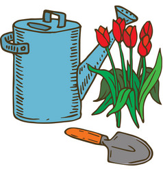Blue watering can and tulip vector