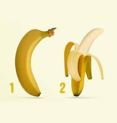 Peeling banana peels vector