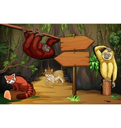 Wild animals in the cave vector image vector image