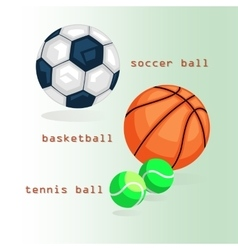 Sports balls Football basketball tennis vector image vector image