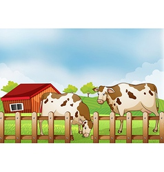 A farm with two cows inside the fence vector image