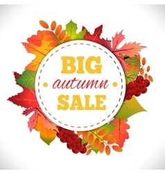 Big autumn sale vector image