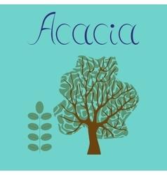 Flat stylish background plant Acacia vector