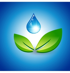 Green Leaf and Water Drop vector image