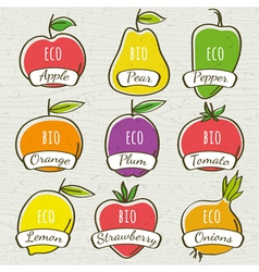 set of organic vegetable and fruit vector image