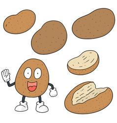set of potato vector image
