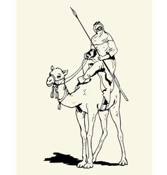 Tuareg camel rider vector image