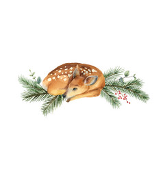 watercolor christmas card with fawn and fir vector image