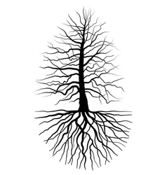 The tree and root vector image