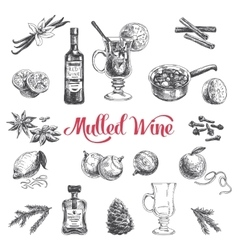 hand drawn with mulled wine vector image