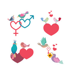 birds and hearts collection vector image