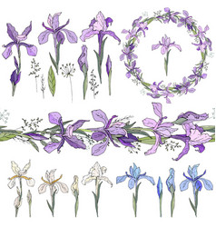 Blue irises - elements isolated objects wreath vector