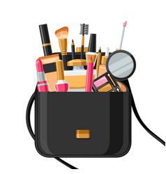cosmetics for skincare and makeup in bag vector image