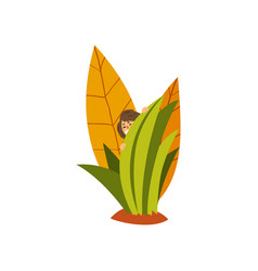 cute little fairy creature hiding in the tall vector image
