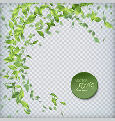 green flying leaves vector image