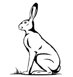 One hare black and white vector