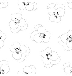 pansy flower white background outline vector image
