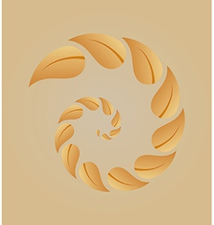 spiral of yellow leaves vector image