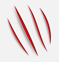 animal claw scratches vector image vector image