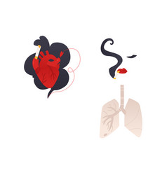flat danger of smoking symbols icon set vector image
