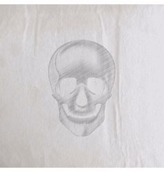 a hand-drawn pencil human skull on an old wrinkled vector image
